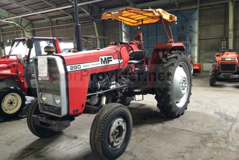 Massey Ferguson / MF-290 in Zimbabwe Stock